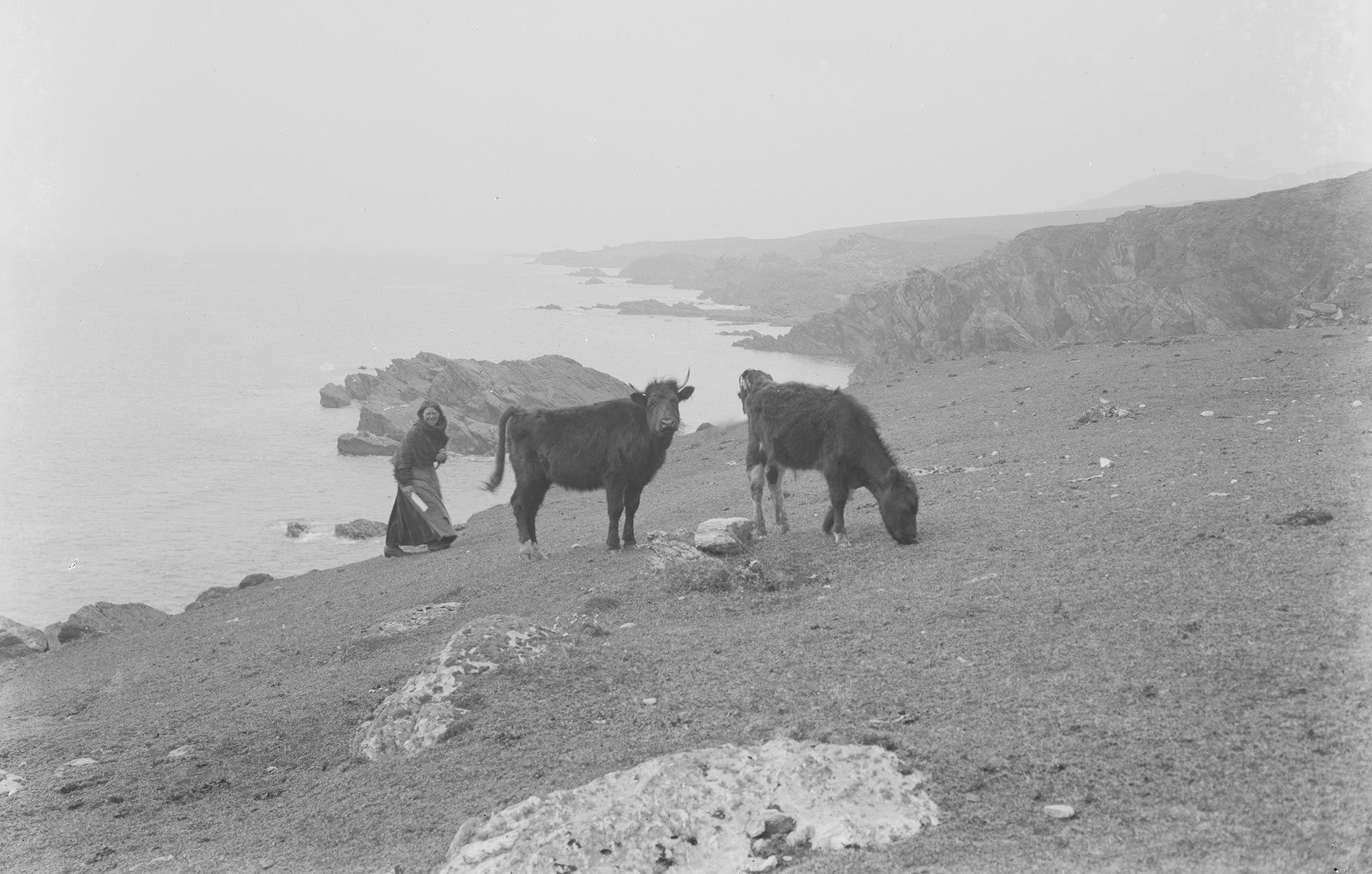 Starvation fears on Achill Island