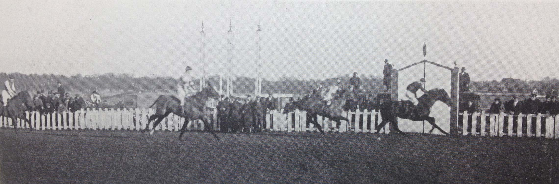 Horse racing to be curtailed in 1917