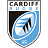 Cardiff Blues Flag