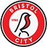 Bristol City Flag