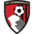 AFC Bournemouth Flag