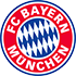 Bayern Munich Flag