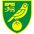 Norwich City Flag